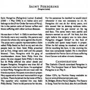 STPEREGRINE_FL (1)22_Page_114